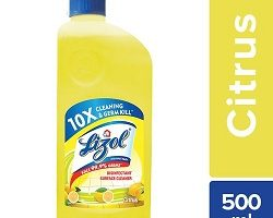 Lizol Disinfectant Surface Cleaner - Citrus, 500 ml