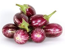 brinjal-varikatri-organically-grown